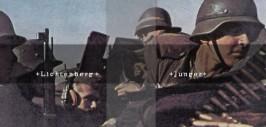 лихтенберг и юнгер