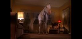 Конь в доме Палмеров, как зимой у моря