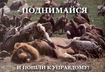 русский мир